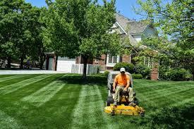 lawn care gallery wichita andover derby goddard ks