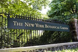 Botanical Garden In The Bronx New York Botanical Gardens Ny Botanical Gardens Ny What To Do