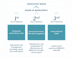 risk management and control system volkswagen group annual