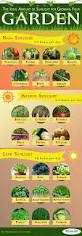 Container Vegetable Gardening Ideas by Gardening Infographic U2026 Pinteres U2026