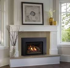Decorate Inside Fireplace by Fireplace Mantels For Sale House Interior And Furniture