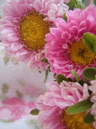 just flowers florist 896 best garden just flowers images on flowers