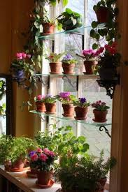 Design For Indoor Flowering Plants Ideas 24 Of The Most Beautiful Ideas On Indoor Mini Garden To Collect