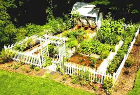 Vegetables Garden Ideas Raised Planter Boxes Vegetable Garden Planner Catalogs Small With