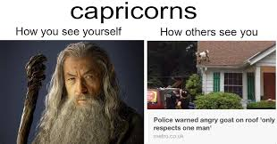 Capricorn Meme - 21 funny posts for capricorn season smosh