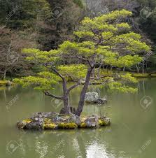 japanese garden images u0026 stock pictures royalty free japanese