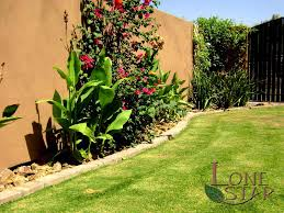 Backyard Landscaping Phoenix Complete Landscape Projects And Landscaping Themes