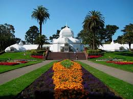 Botanical Garden Golden Gate Park A Guide To Exploring San Francisco S Golden Gate Park Wheretraveler