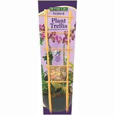 shop better gro 2 pack bamboo orchid trellis at lowes com