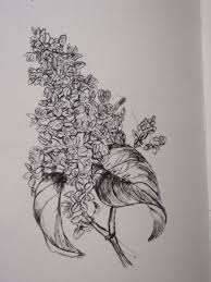 flower sketch suzanne mortell