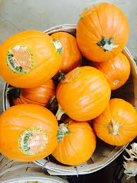 15 best trader joe u0027s pumpkin products and 5 to skip sfgate