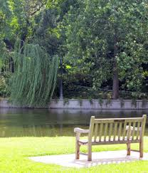 free images pond peaceful backyard garden park bench trees