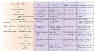 inheritance pattern quizlet the porphyrias part 1