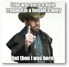Transvestite Meme - chucknorris transvestite transgender humor pinterest