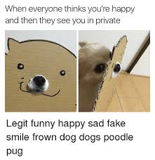 Frowning Dog Meme - when everyone thinks you re happy and then they see you in private