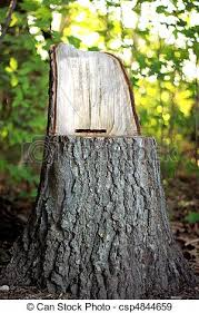 Stump Chair Stock Photographs Of Chair Carved From Tree Stump Chair Carved