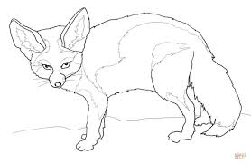 fennec fox coloring page free printable coloring pages