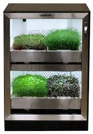 indoor herb growing kits even die hard plant killers can u0027t kill