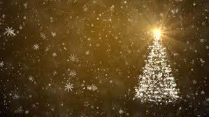 falling snowflake christmas lights growing christmas tree with falling snowflakes and stars stock