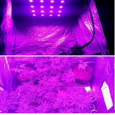 Full Spectrum Led Grow Lights 10w Led Grow Light Chip Cob Full Spectrum 380 840nm Diy Led Grow