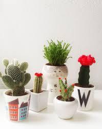 Garden Table Decor Tiny Cactus Decor Gift Ideas Small Garden Ideas