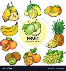 set of colorful hand draw fruit royalty free vector image