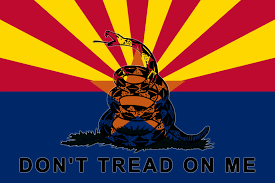 Don T Tread On Me Flag Origin Diamondback Militia Official Wasteland 3 Wiki