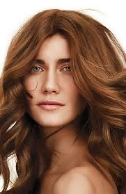 hair color 201 whether you re looking to go blonde brunette black or red you