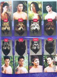 article wolf twilight saga and saga
