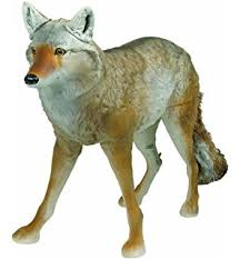 Can Coyotes See Red Light Amazon Com Edge Innovative Hunting Yote Coyote Hunting Decoy