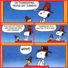 What Is Thanksgiving Really About 24 Best Thanksgiving Cartoons U0026 Humor Images On Pinterest