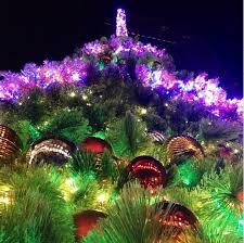 tree light up nyc rainforest islands ferry