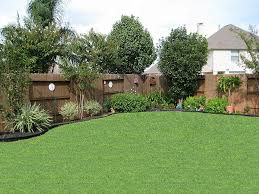 Backyard Pictures Ideas Landscape Back Yard Trees Along Fence Pinteres