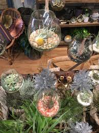 Home Decor Louisville Ky Mahonia Home Store And Floral Design Studio In Louisville Ky