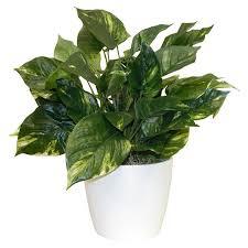 Silk Flower Depot - 407 best florals images on pinterest silk plants vases and