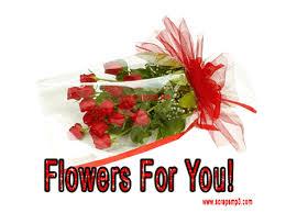 Nice Flowers Beautiful Rose Flowers Images Rose Flower Images Beautiful