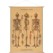 cavallini poster cavallini vertical vintage poster kit paper source