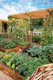 intensive gardening grow more food in less space with the least