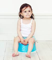 Babybjorn Potty Chair Reviews Potty Chair Guide We Review The Best Potty Training Gear
