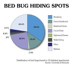 light bed bug infestation how to get rid of bed bugs complete guide
