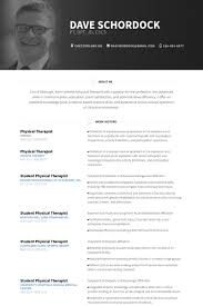 Jd Resume Physical Therapist Resume Samples Visualcv Resume Samples Database