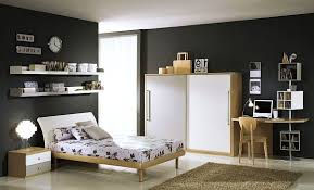 Cool Boys Room Paint Ideas For Colorful And Brilliant Interiors - Boy bedroom colors