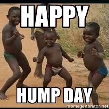 Happy Hump Day Memes - 37 happy hump day meme graphics gifs pictures picsmine