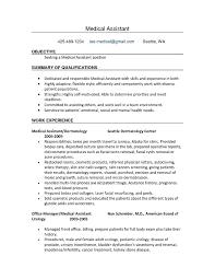 It Resumes Samples It Professional Resume Template Resume Template And Professional