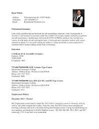 cv example download button cv template resume cv a simple media
