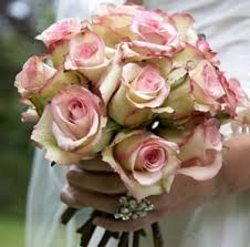wedding flowers roses wedding flowers roses the wedding specialiststhe wedding specialists