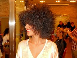 top ten new york natural hair salons and stylists tgin