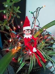 Pinterest Holiday Decorations Always Have A Grown Up Assist With Holiday Decorations Elf On