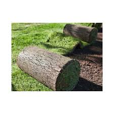 40 square meters of lawn that is ready in rolls prato erboso