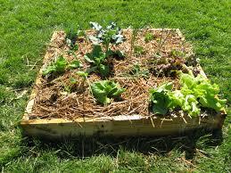 mitchell u0027s nursery small space vegetable gardening demonstration